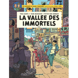 VALLÉE DES IMMORTELS LA TOME 1 MENACE SUR HONG KONG