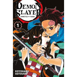 DEMON SLAYER T01
